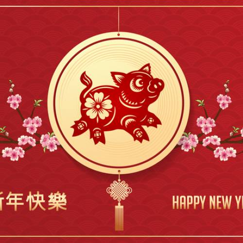 Best Wishes for the New Year of the Pig!