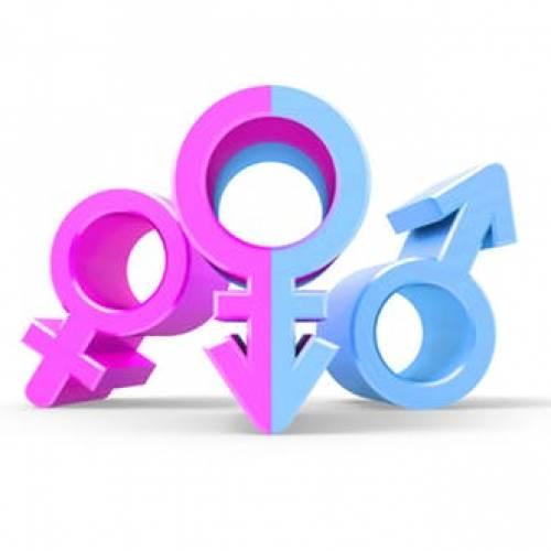 WIN World Survey (WWS) 2018: Gender Equality